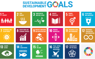 Antibiotic resistance and Sustainable Development Goals